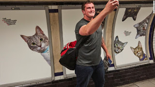 Cats Take Over London Subway Station